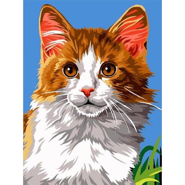 "Картина по номерам ""Домашний кот"""