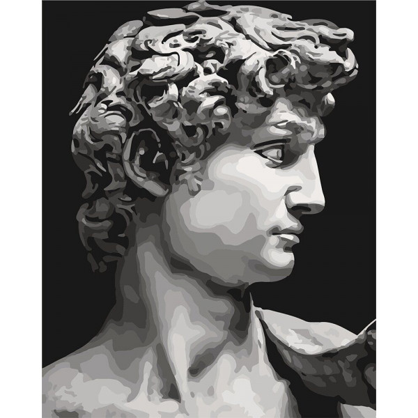 "Картина по номерам ""Давид Микеланджело"""