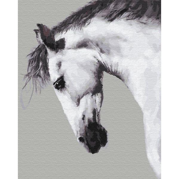 """Картина по номерам """"Белая лошадь"""""""