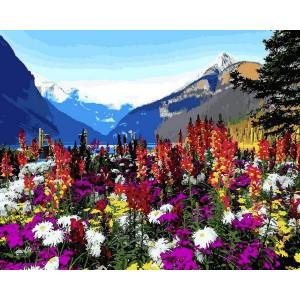 "Картина по номерам ""Альпийские луга"""