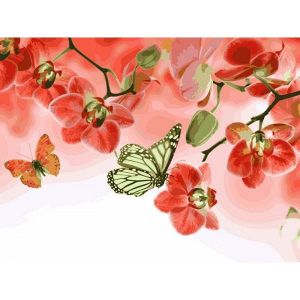 """Картина по номерам """"Бабочки и красные орхидеи"""""""