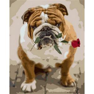 """Картина по номерам """"Английский бульдог с розой"""""""