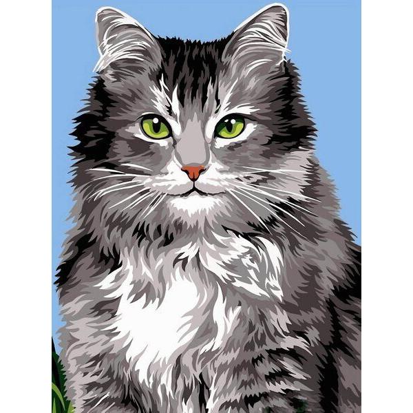 """Картина по номерам """"Длинношерстная кошка"""""""