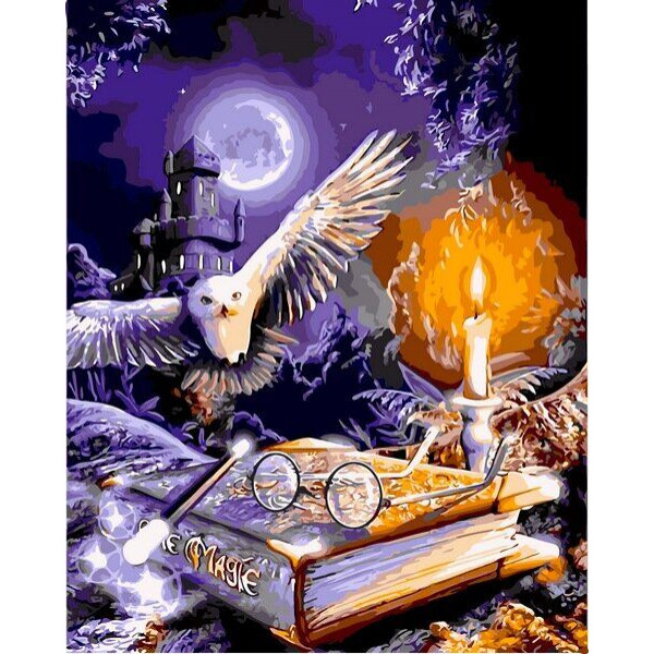 "Картина по номерам ""Гарри Поттер. Сова и книга"""