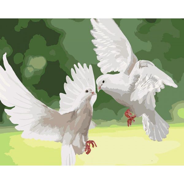"Картина по номерам ""Белые голуби"""