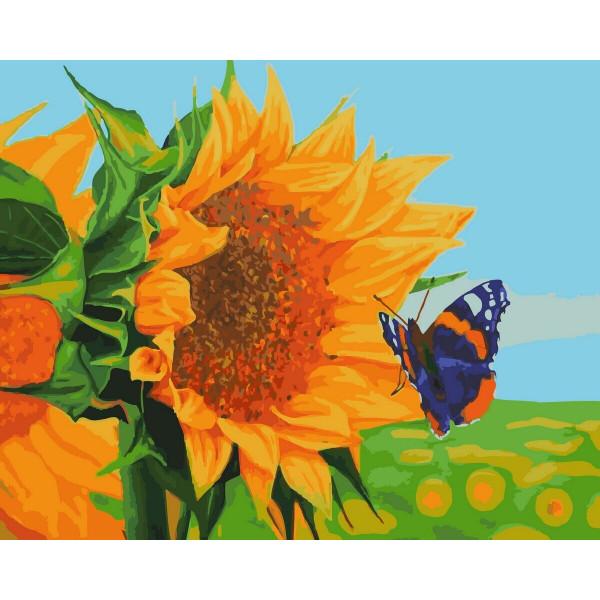"Картина по номерам ""Бабочка на подсолнухе"""