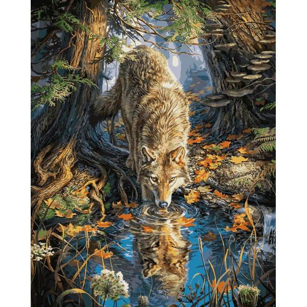 """Картина по номерам """"Волк на водопое"""""""