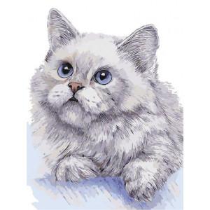 """Картина по номерам """"Белый кот"""""""