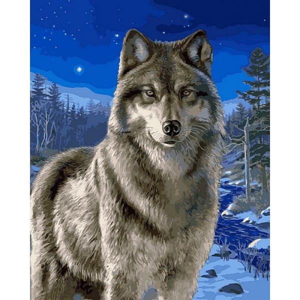 """Картина по номерам """"Волк в зимнем лесу"""""""