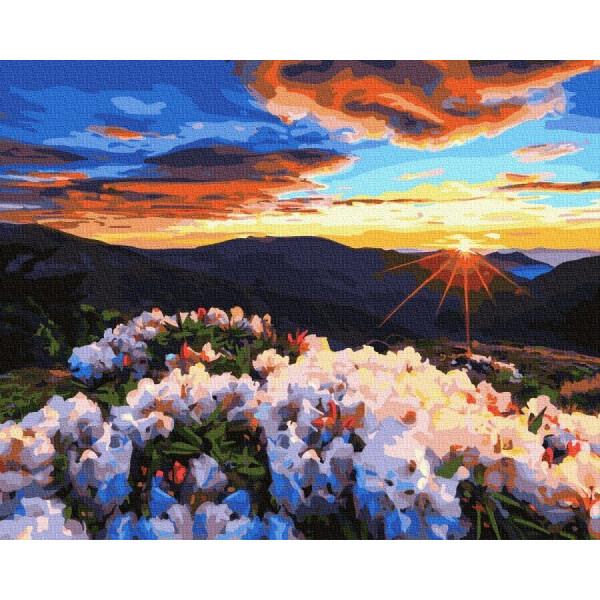 """Картина по номерам """"Восход в горах"""""""