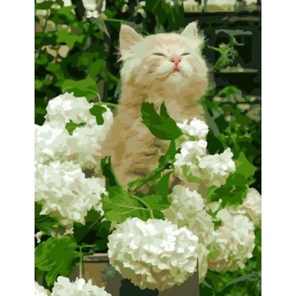 """Картина по номерам """"Довольный котенок"""""""