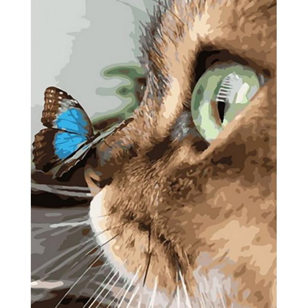 """Картина по номерам """"Бабочка на носу у кошки"""""""