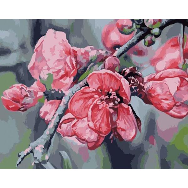 "Картина по номерам ""Ветка яблони"""