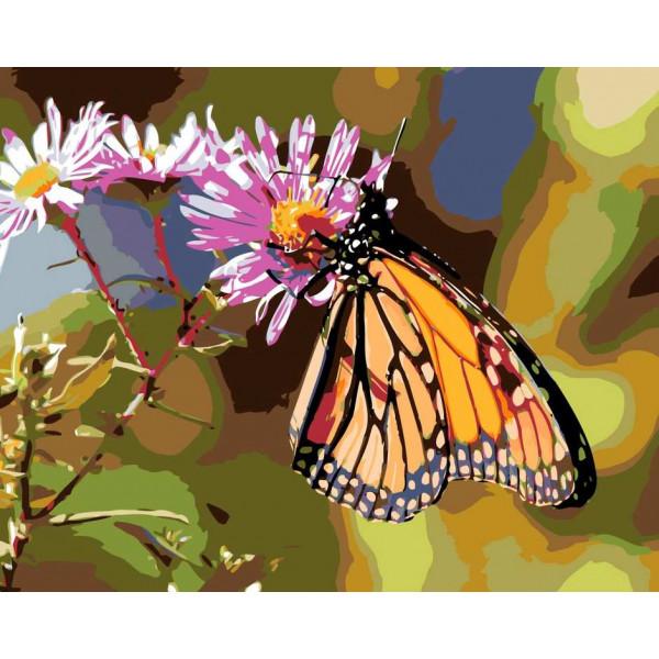 "Картина по номерам ""Бабочка на цветке"""
