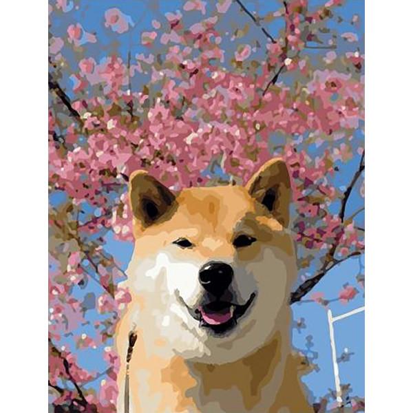 "Картина по номерам ""Весенний пес"""