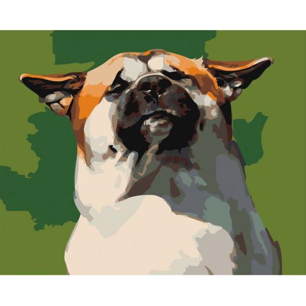 """Картина по номерам """"Довольный пёс"""""""
